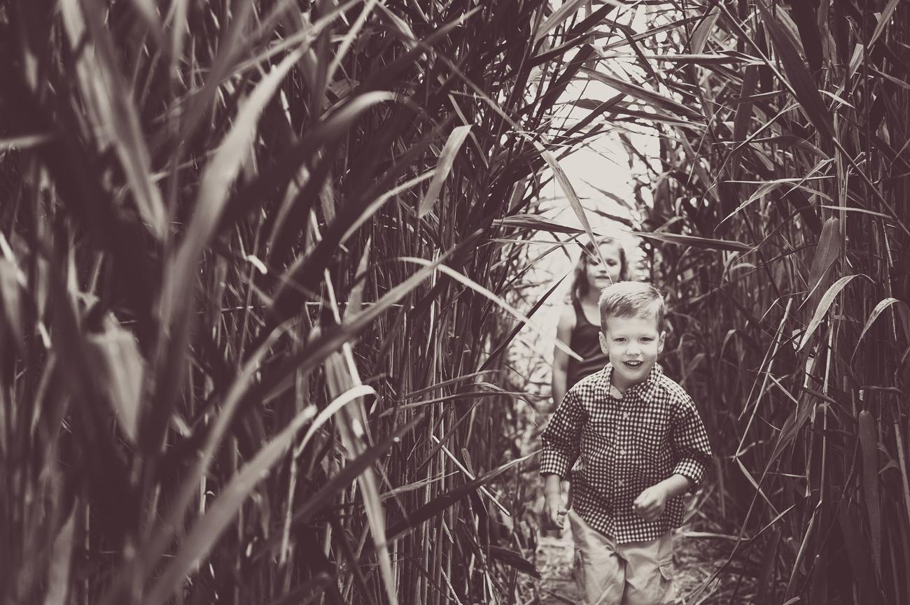 children running through corn field